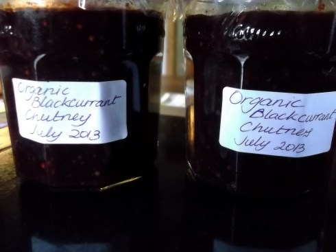 Blackcurrant Chutney