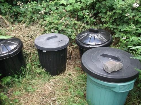 compost loo 001