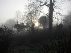 bealtaine-cottage-feb-2011-0074