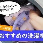 ダニ対策におすすめの洗濯機