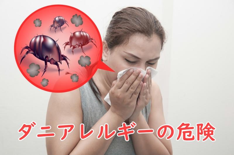 ダニアレルギーの危険