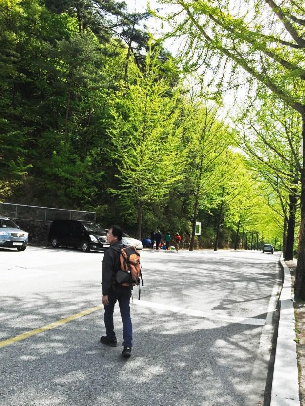 Gayasan: Walk from the final bus stop to Haeinsa temple