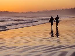 Summary and Analysis of a Sea Side Walk by Elizabeth Barrett Browning