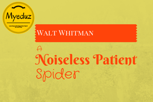 A Noiseless Patient Spider Summary by Walt Whitman