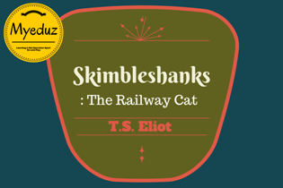 Skimbleshanks: The Railway Cat Summary by T. S. Eliot