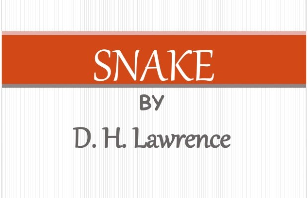 Summary of Snake by D.H.Lawrance in Hindi