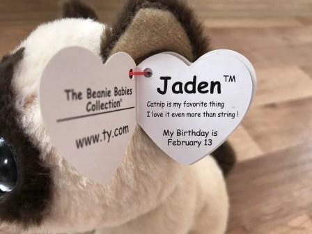 Jaden Beanie Baby Poem
