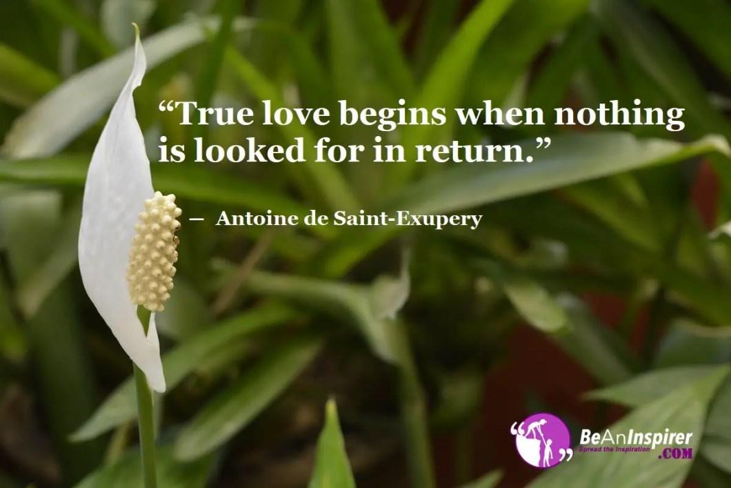 True-love-begins-when-nothing-is-looked-for-in-return-Antoine-de-Saint-Exupery-Top-100-Love-Quotes-Be-An-Inspirer