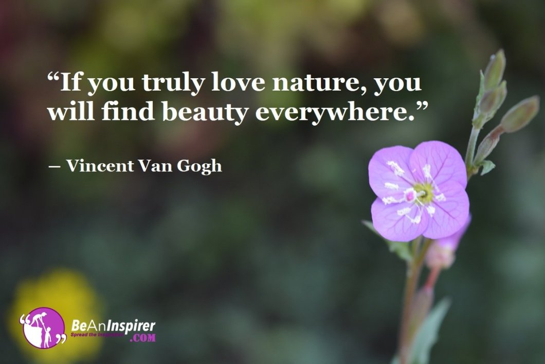 Every Scroll Across Nature Is A Mesmerizing Experience Worth Cherishing