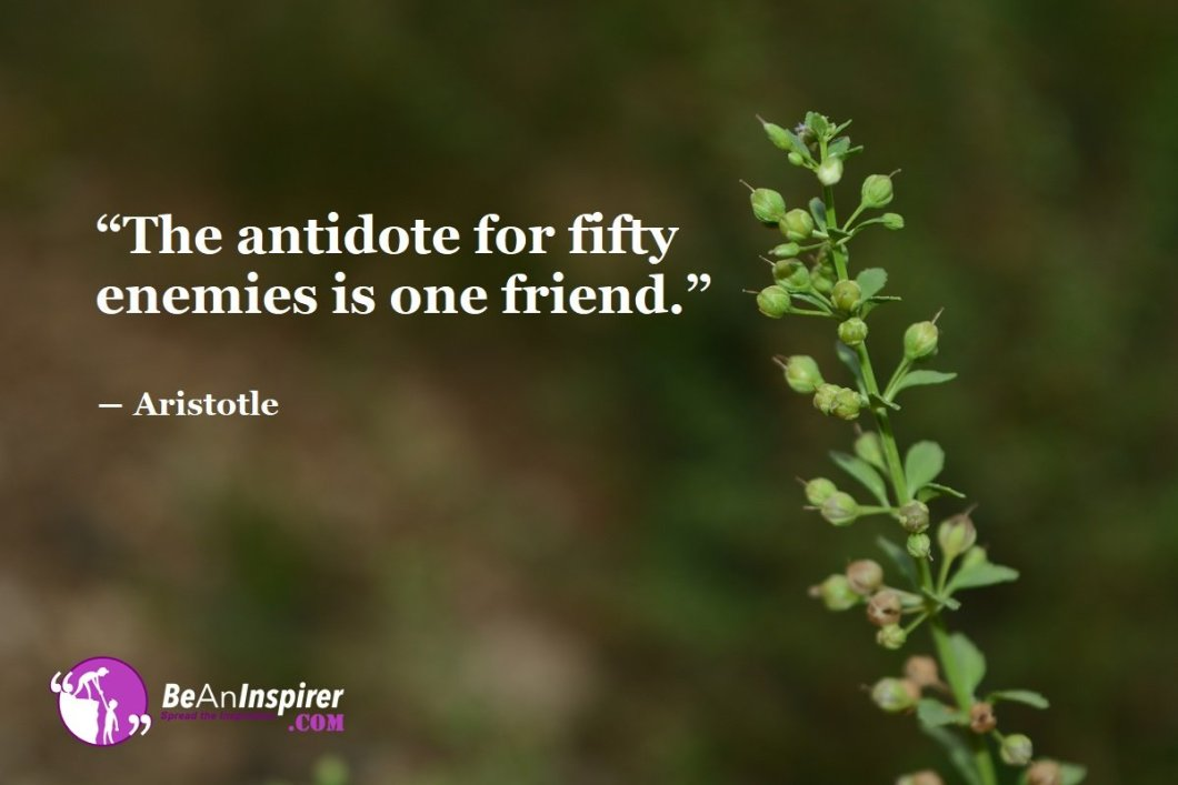 The-antidote-for-fifty-enemies-is-one-friend-Aristotle-Top-100-Friendship-Quotes-Be-An-Inspirer