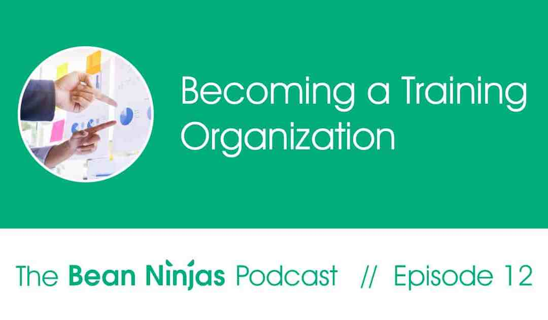 12. Being a training organisation and what it means to be a great trainer