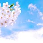 青梅子ども子育て懇談会 3月3日(日)開催のお知らせ