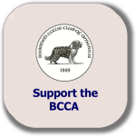 support-bcca-button.fw
