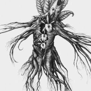 Botanist-IV-Mandragora
