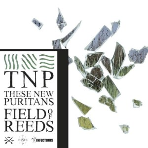 These-New-Puritans-Field-of-Reeds1