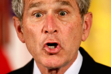 George Bush Monkey Face