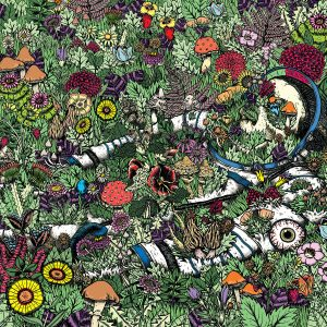 Best albums of 2016 oozing wound