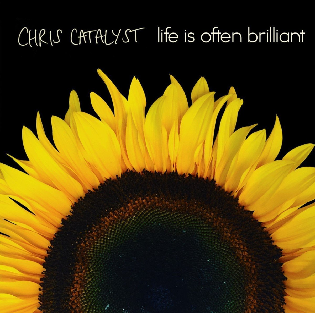 Chris Catalyst - Life Is Often Brilliant Review