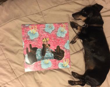 Jefferson Park Boys Casual Horns, Dog Review