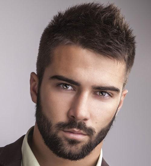 medium sized beard