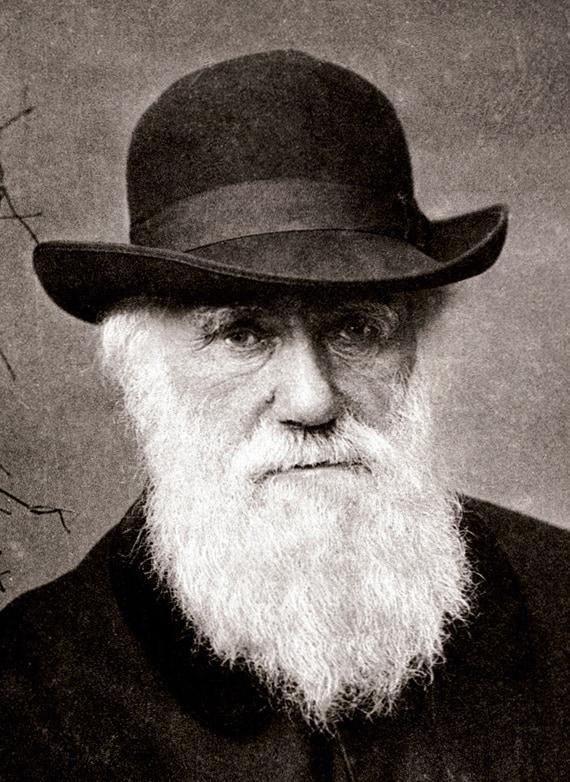 Charles Darwin long beard style