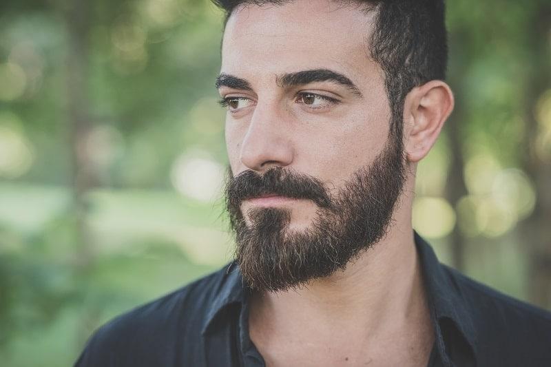 chevron mustache with beard