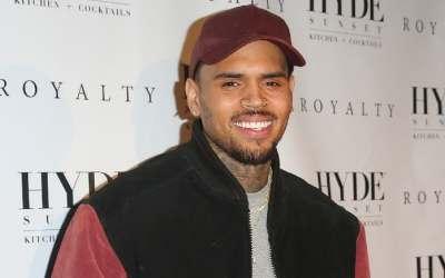 Chris Brown Beard Styles