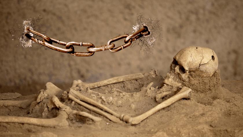 slavery lobotomised