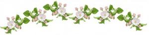 blossom banner