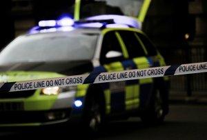 Forensics/Crime scene