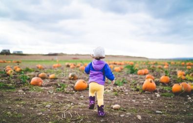 20-pumpkin-sensory-activities