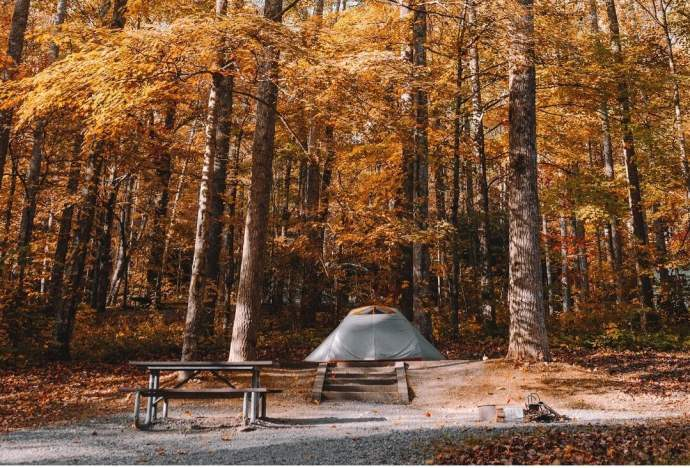 Stay Healthy During The Summer And Learn How To Stay Cool In A Tent 1