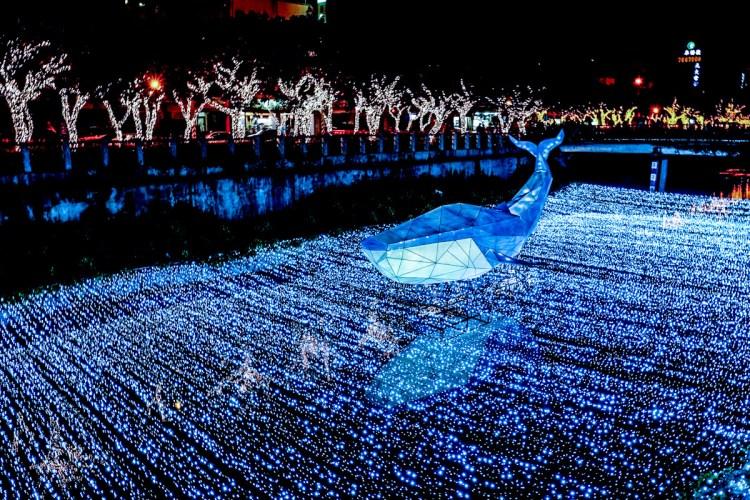 2020屏東綵燈節打造全台灣唯一的夜間動物園,整個夜晚都可以開派對