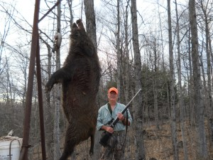 How to Boar Hunt with a High Powered Rifle