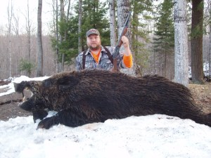 How to Hunt Boars