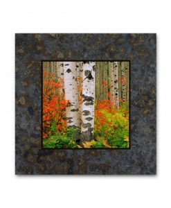 Single Coaster Picture on Slate - Red Bush & Aspen, McClure Pass