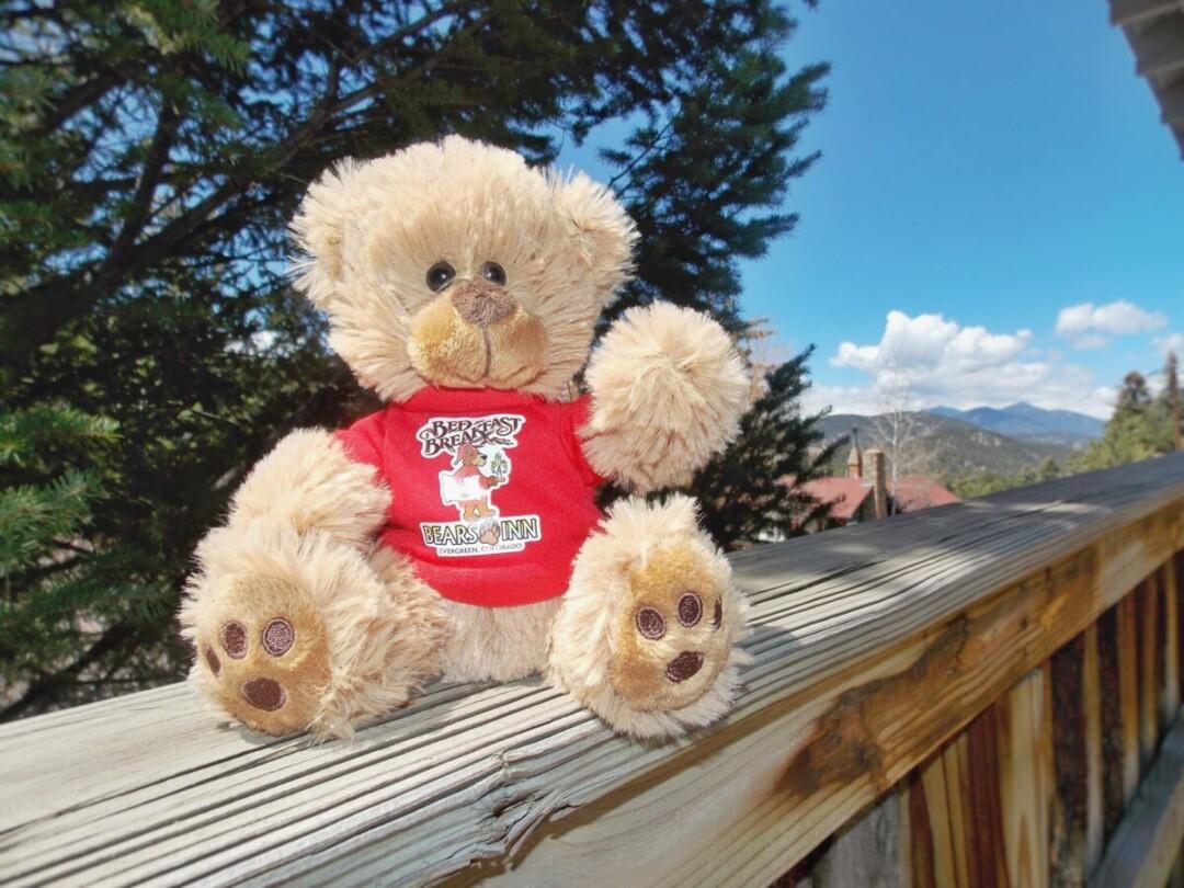 Bears Inn Plush Bear 2