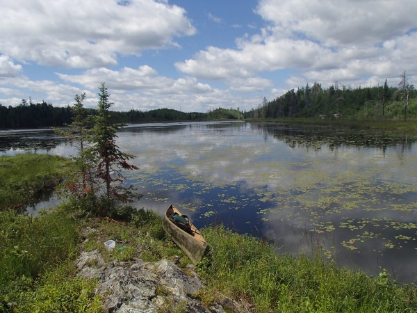 Guided BWCA canoe trips