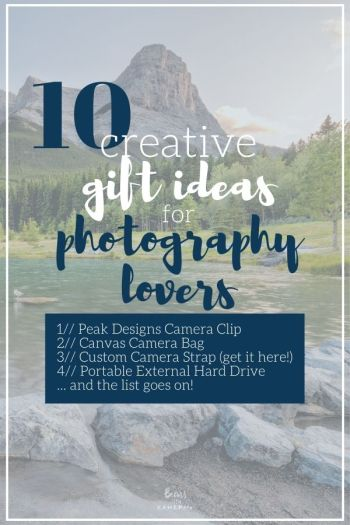 Creative Gift Ideas For Photography Lovers 2020 Bears With Cameras