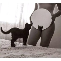 Kitty Cat - Nasty #Photography
