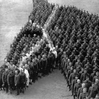 Soldiers tribute to war horses - by Arthur Mole
