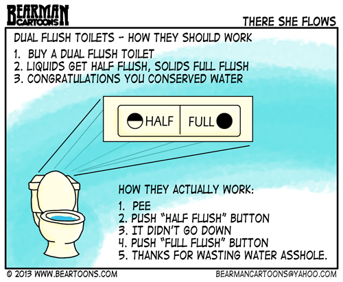 Bearman Cartoon How to Operate a Dual Flush Toilet
