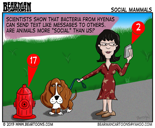 11-14-13-Bearman-Cartoon-Animal-Text-Message