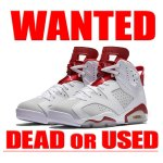 ALTERNATE '91 AIRJORDAN6 RETRO NIKE 買取情報