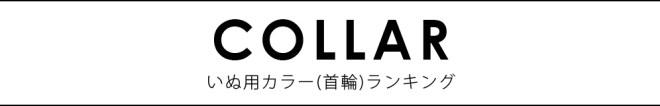 犬用カラー(首輪)ランキング2017 / DOG COLLAR RANKING 2017