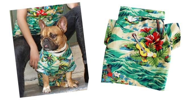LUAU by Dog threads - 愛犬用アロハシャツ