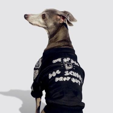 オーストラリア生まれのドッグブランド『Eye of dog』の新作ジャンバー日本初登場!