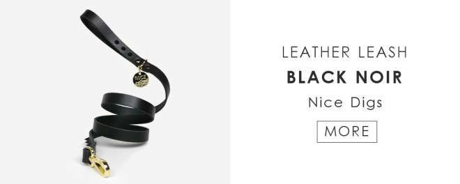 Nice digs - Leather leash jungle noir