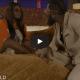 "[Video] Simi x Adekunle Gold – ""BITES THE DUST"" (Live Performance) 12"