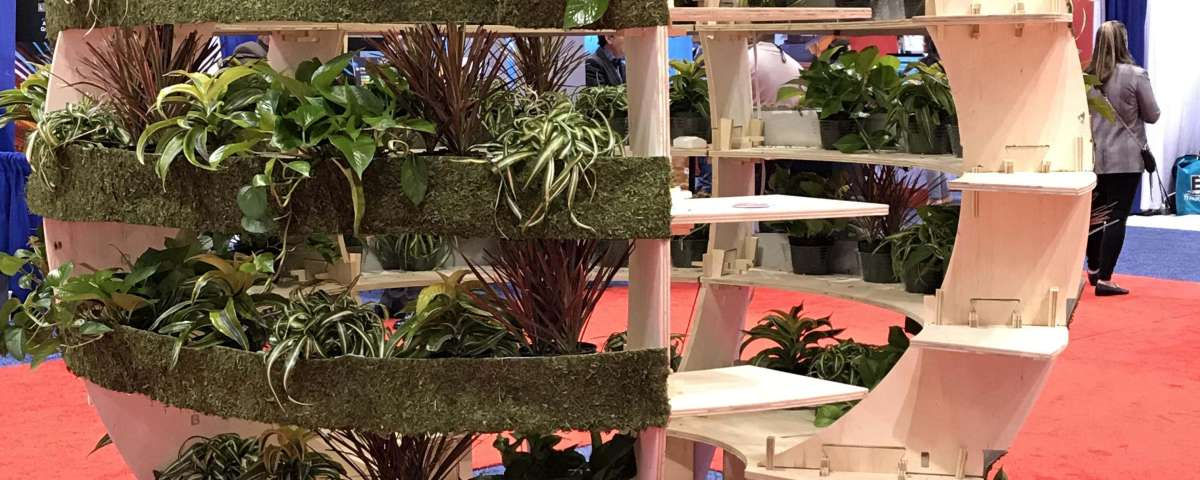 Use Plants to Showcase a Healthier Home